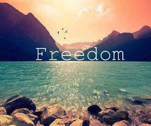 free, freedom, and ocean image