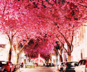 belive, pink, and city image