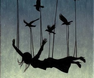 bird, fly, and Dream image