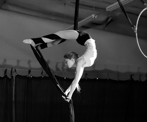 circus and aerial silk image