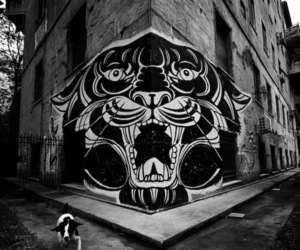 black and white, tiger, and art image