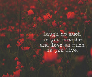 laugh, love., and live image