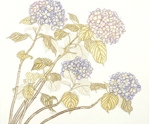 flowers, hydrangea, and illustration image