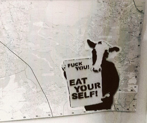 cow, eat, and funny image