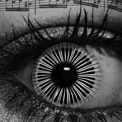 black and white, music, and notes image