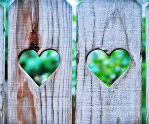 heart, hearts, and fence image