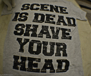 scene, text, and scene is dead image
