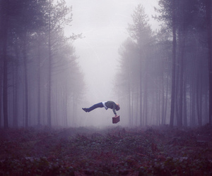 imagine dragons, forest, and music image