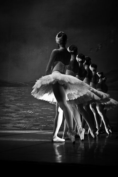 115 Images About Ballet On We Heart It See More About Ballet Dance And Ballerina