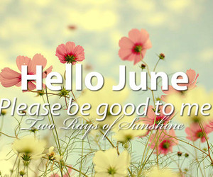 quote, flowers, and june image