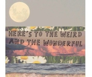 wonderful, weird, and quote image