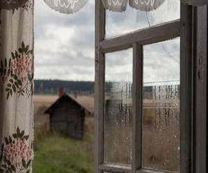 window, nature, and house image