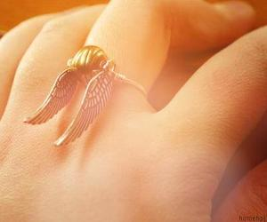 harry potter and gold snitch image