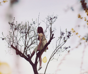 girl, tree, and photography image