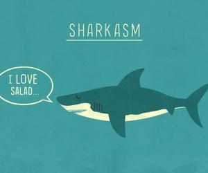 shark, sarcasm, and funny image