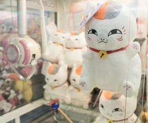 japan, cat, and neko image