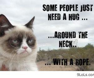 hug, grumpy cat, and cat image