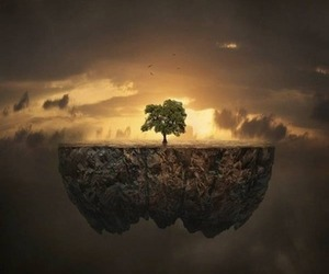 beautiful and tree image