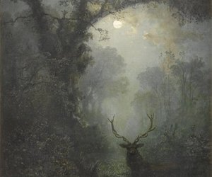 art, deer, and forest image