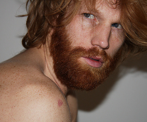 blue eyes, ginger beard, and freckles image