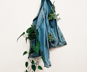 plants, jacket, and photography image