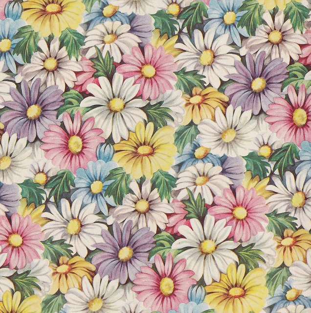 Vintage Floral Gift Wrap Spring Daisy On We Heart It