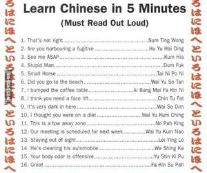 chinese, funny, and lol image