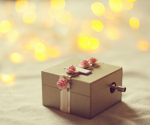 box, flowers, and light image