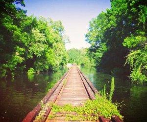 beautiful, bora bora, and bridge image