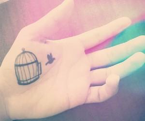 bird, draw, and free image