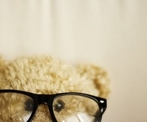 bear, glasses, and teddy image