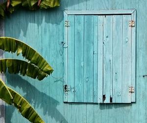 beautiful, house, and palm image