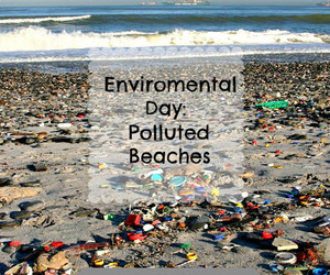 beach, summer, and enviromental day image