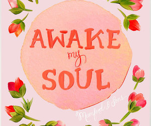 soul, quote, and flowers image