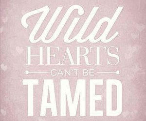tamed, hearts, and quote image