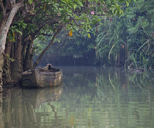 boat, lake, and forest image