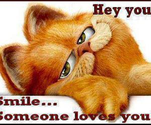 smile, garfield, and quote image