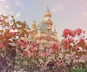 beauty, disney, and roses image