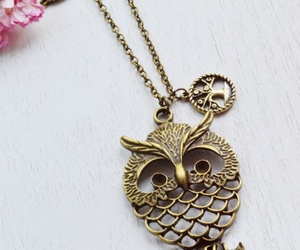 accessories and owls image