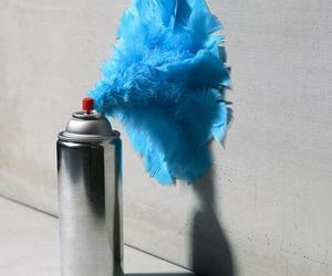 blue and spray image