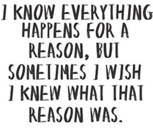 everything, quote, and reason image