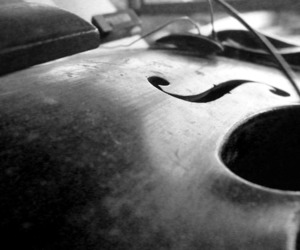 black and white, cello, and old image