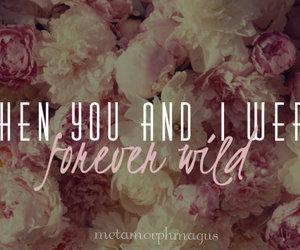 Lyrics, mine, and song image