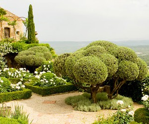 cottage, english garden, and hedge image