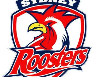 footy and sydney roosters image