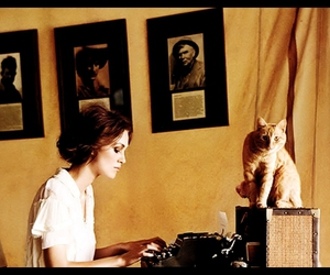 africa, writing, and cat image