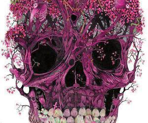 skull, pink, and art image