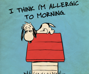 morning, snoopy, and allergic image