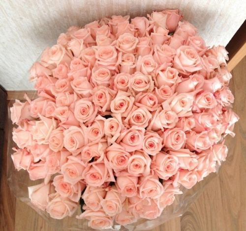44 Images About Flores On We Heart It See More About Flowers Pink