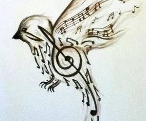 music, bird, and art image